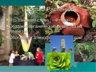 Царство Растений. Что означает слово : «Флора»? Создают органические вещества