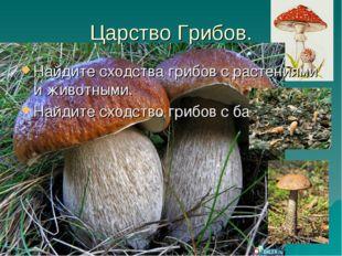 Царство Грибов. Найдите сходства грибов с растениями и животными. Найдите схо
