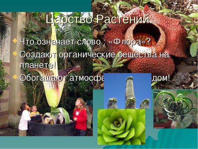 Царство Растений. Что означает слово : «Флора»? Создают органические вещества...