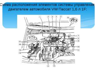 Схема расположения элементов системы управления двигателем автомобиля VW Пасс
