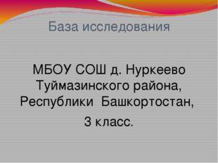 База исследования МБОУ СОШ д. Нуркеево Туймазинского района, Республики Башко