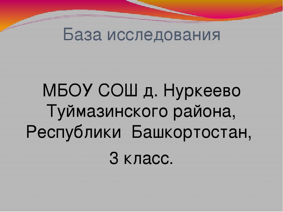 База исследования МБОУ СОШ д. Нуркеево Туймазинского района, Республики Башко...