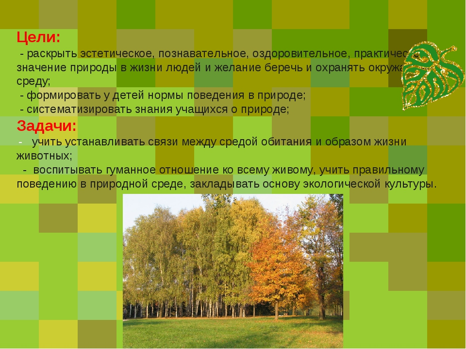 Цели: - раскрыть эстетическое, познавательное, оздоровительное, практическое...