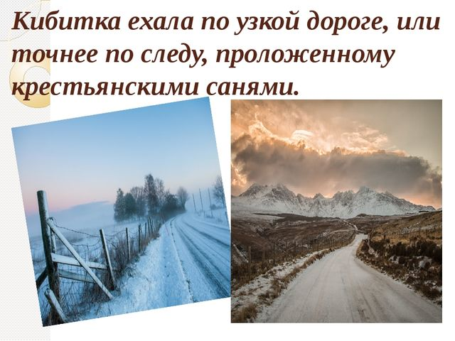 Кибитка ехала по узкой дороге, или точнее по следу, проложенному крестьянским...