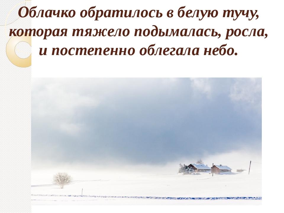 Облачко обратилось в белую тучу, которая тяжело подымалась, росла, и постепен...