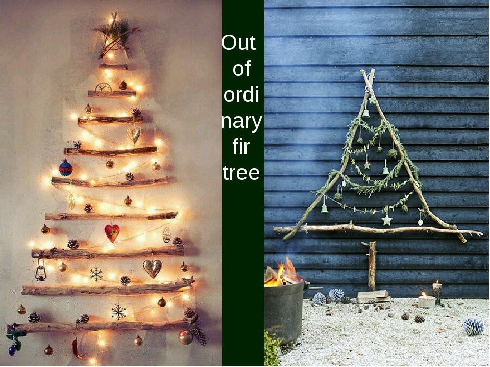 Out of ordinary fir tree