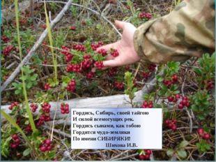 Гордись, Сибирь, своей тайгою И силой всемогущих рек. Гордись сынами, как тоб