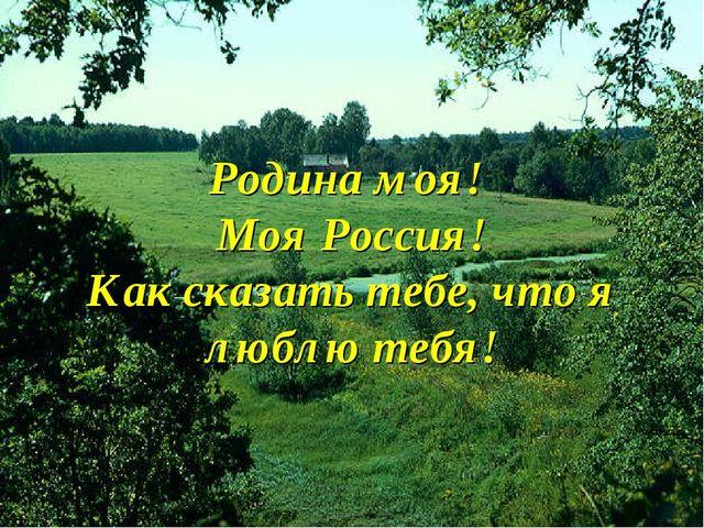 Родина моя! Моя Россия! Как сказать тебе, что я люблю тебя!
