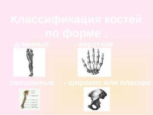 Классификация костей по форме : - длинные - короткие - широкие или плоские -