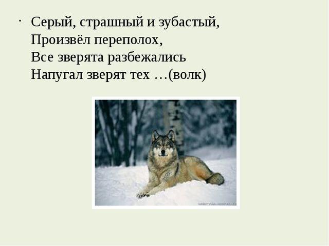 Серый, страшный и зубастый, Произвёл переполох, Все зверята разбежались Напу...