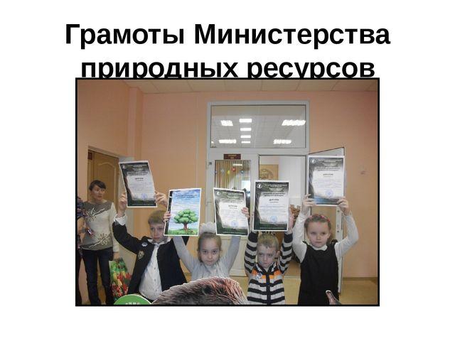 Грамоты Министерства природных ресурсов
