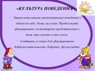 «КУЛЬТУРА ПОВЕДЕНИЯ» Закреплять навыки организованного поведения в детском са