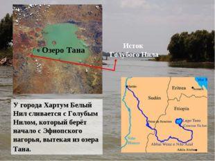 У города Хартум Белый Нил сливается с Голубым Нилом, который берёт начало с Э