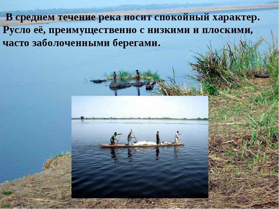 В среднем течение река носит спокойный характер. Русло её, преимущественно с...