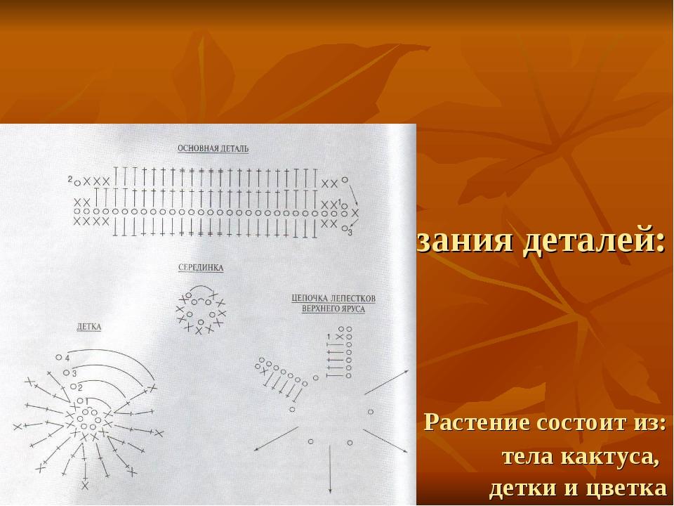 Схема вязания деталей: Растение состоит из: тела кактуса, детки и цветка