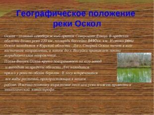 Оскол - главный левобережный приток Северского Донца. В пределах области длин