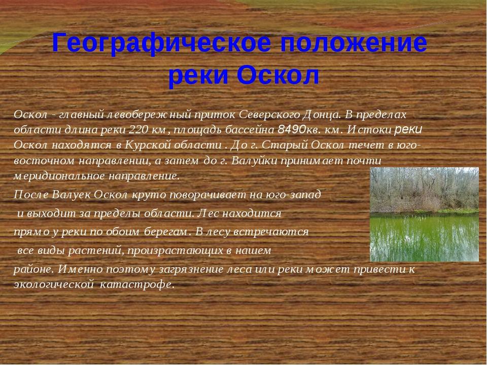 Оскол - главный левобережный приток Северского Донца. В пределах области длин...
