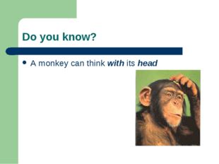 Do you know? A monkey can think with its head