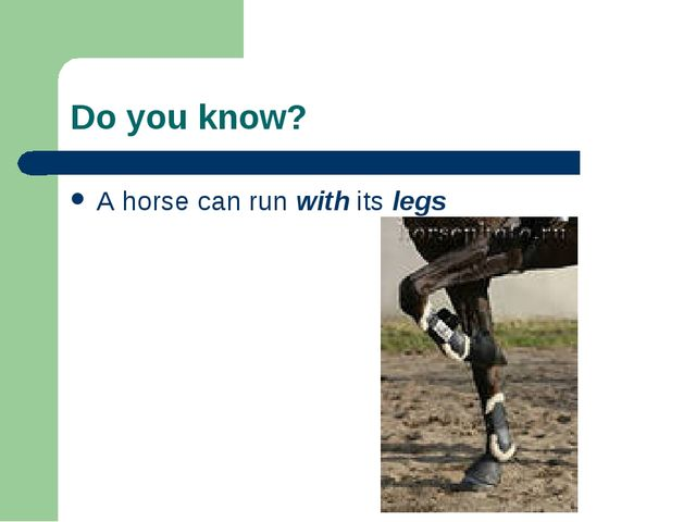 Do you know? A horse can run with its legs