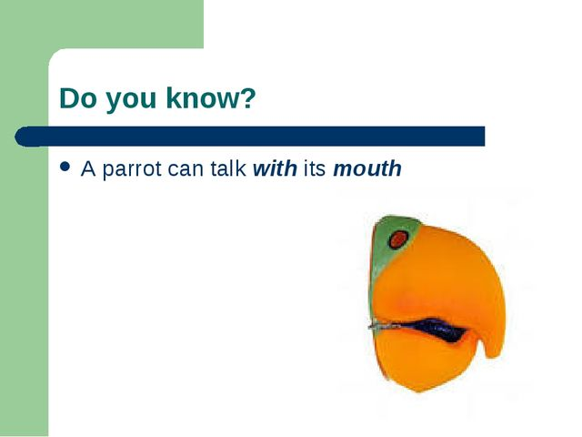 Do you know? A parrot can talk with its mouth