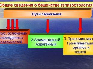 Общие сведения о бешенстве (эпизоотология) Пути заражения 1. Укус, ослюнение