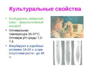 Культуральные свойства Возбудитель сибирской язвы – факультативный анаэроб. О