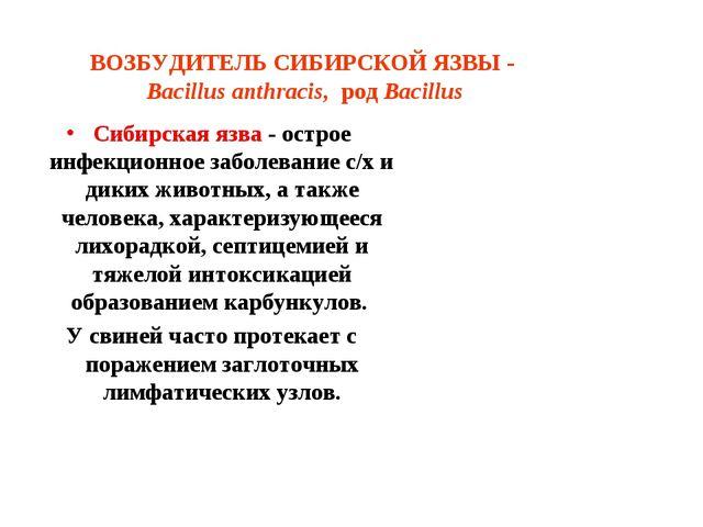ВОЗБУДИТЕЛЬ СИБИРСКОЙ ЯЗВЫ - Bacillus anthracis, род Bacillus Сибирская язва...