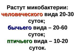 Растут микобактерии: человеческого вида 20-30 суток; бычьего вида – 20-60 сут