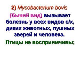 2) Mycobacterium bovis (бычий вид) вызывает болезнь у всех видов с/х, диких ж
