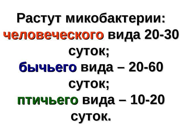 Растут микобактерии: человеческого вида 20-30 суток; бычьего вида – 20-60 сут...