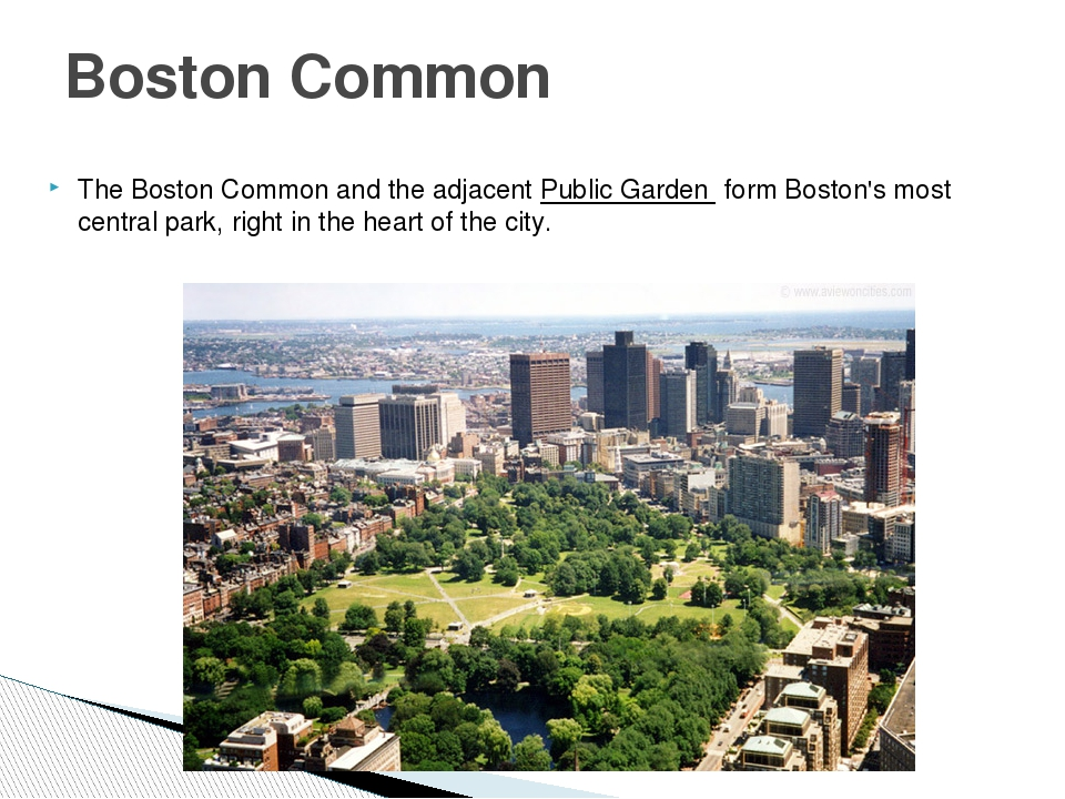 The Boston Common and the adjacent Public Garden  form Boston's most central...