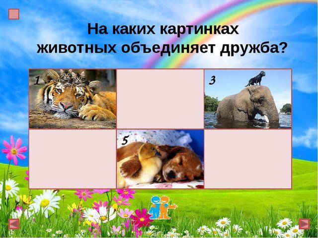 На каких картинках животных объединяет дружба? 1 2 3 4 5 6
