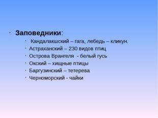 Заповедники: Кандалакшский – гага, лебедь – кликун. Астраханский – 230 видов
