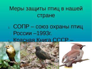 Меры защиты птиц в нашей стране СОПР – союз охраны птиц России –1993г. Красна