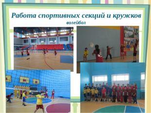 Работа спортивных секций и кружков волейбол