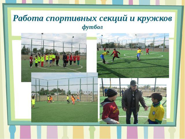 Работа спортивных секций и кружков футбол