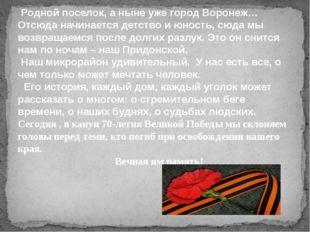 Родной поселок, а ныне уже город Воронеж… Отсюда начинается детство и юность,