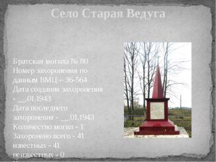 Село Старая Ведуга Братская могила № 80 Номер захоронения по данным ВМЦ – 36-