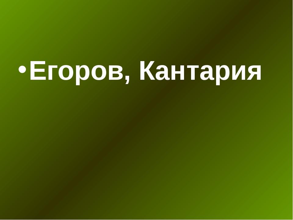 Егоров, Кантария
