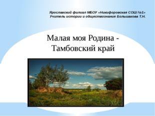 Ярославский филиал МБОУ «Никифоровская СОШ №1» Учитель истории и обществознан