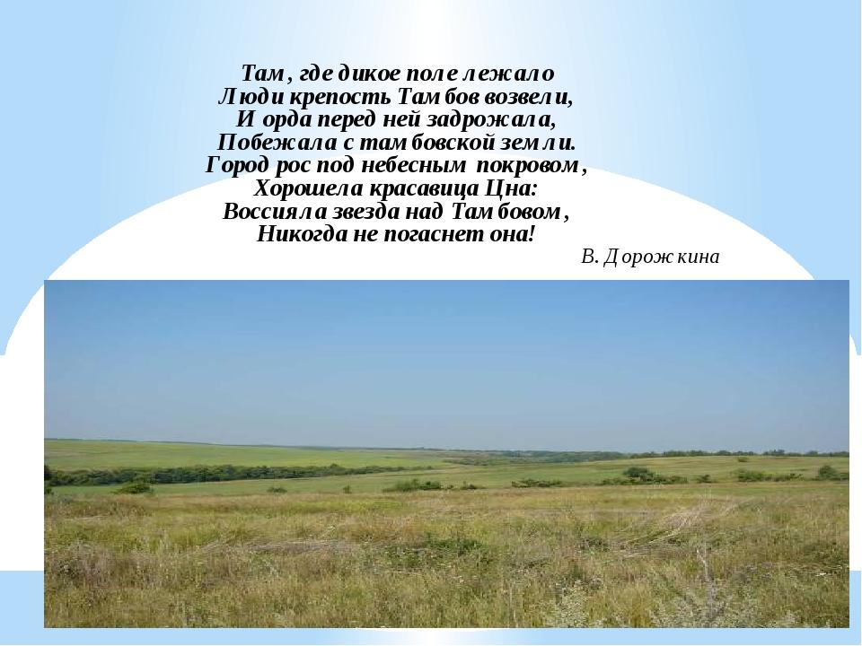 Там, где дикое поле лежало Люди крепость Тамбов возвели, И орда перед ней зад...