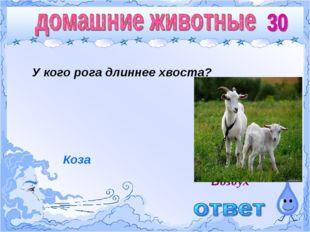 У кого рога длиннее хвоста? Воздух Коза