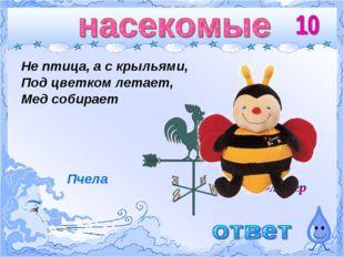Флюгер Не птица, а с крыльями, Под цветком летает, Мед собирает Пчела