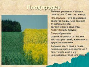 Плодородие Человек распахал и засеял поля около 10 тыс. лет назад. Плодородие