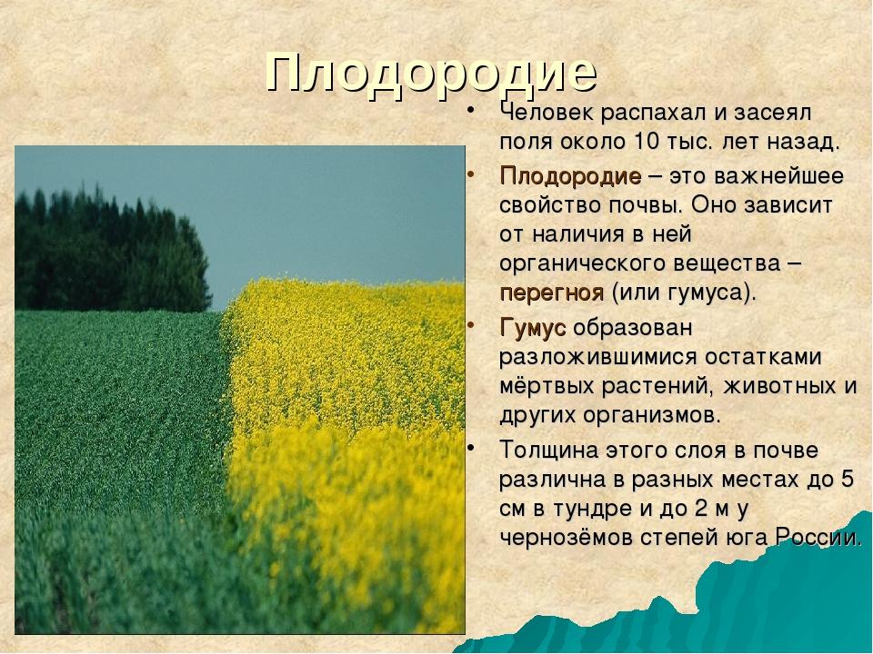 Плодородие Человек распахал и засеял поля около 10 тыс. лет назад. Плодородие...
