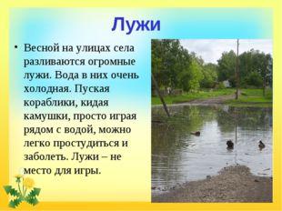 Лужи Весной на улицах села разливаются огромные лужи. Вода в них очень холодн