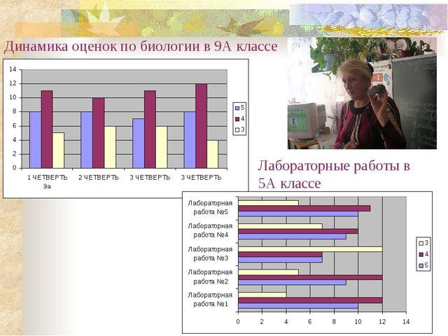 Динамика оценок по биологии в 9А классе Лабораторные работы в 5А классе