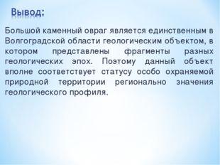 Большой каменный овраг является единственным в Волгоградской области геологич