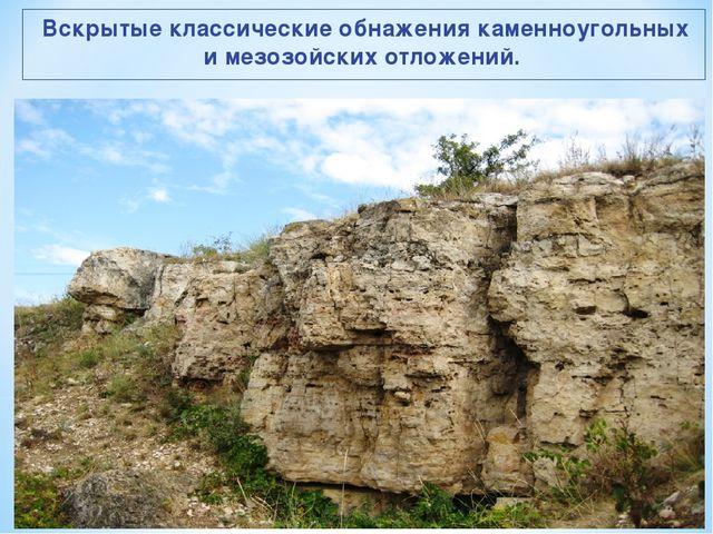 Вскрытые классические обнажения каменноугольных и мезозойских отложений.