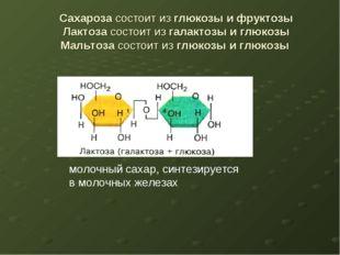Сахароза состоит из глюкозы и фруктозы Лактоза состоит из галактозы и глюкозы